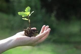 piano sostenibilità liquigas 2025